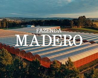 Da Fazenda Madero para a mesa de todos os nossos clientes